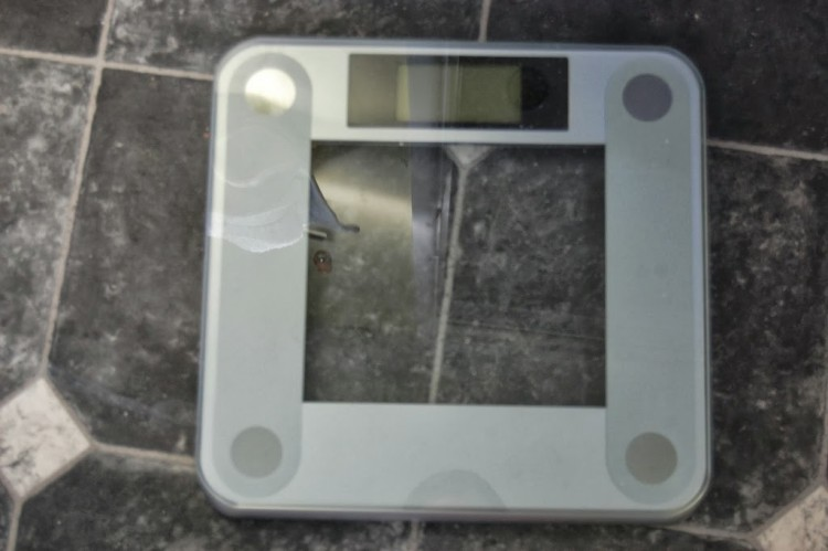 Ozeri Precision bathroom scales – review