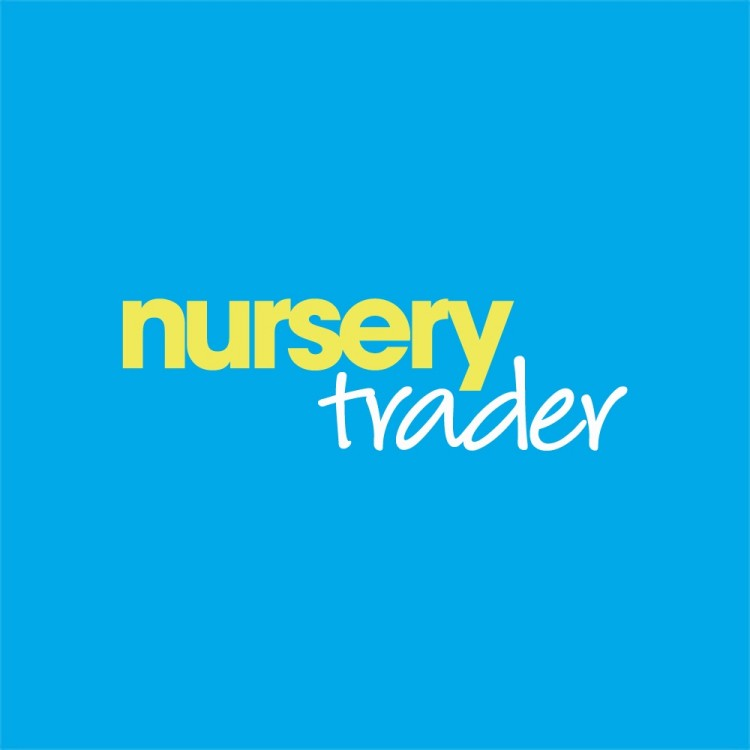 Nursery Trader Bump to Toddler competition and VIP giveaway