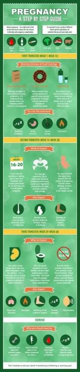 Step by Step pregnancy guide