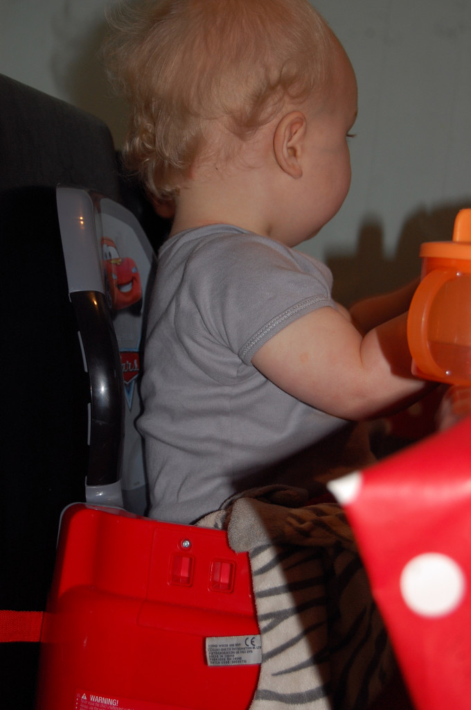 Tomy booster seat review