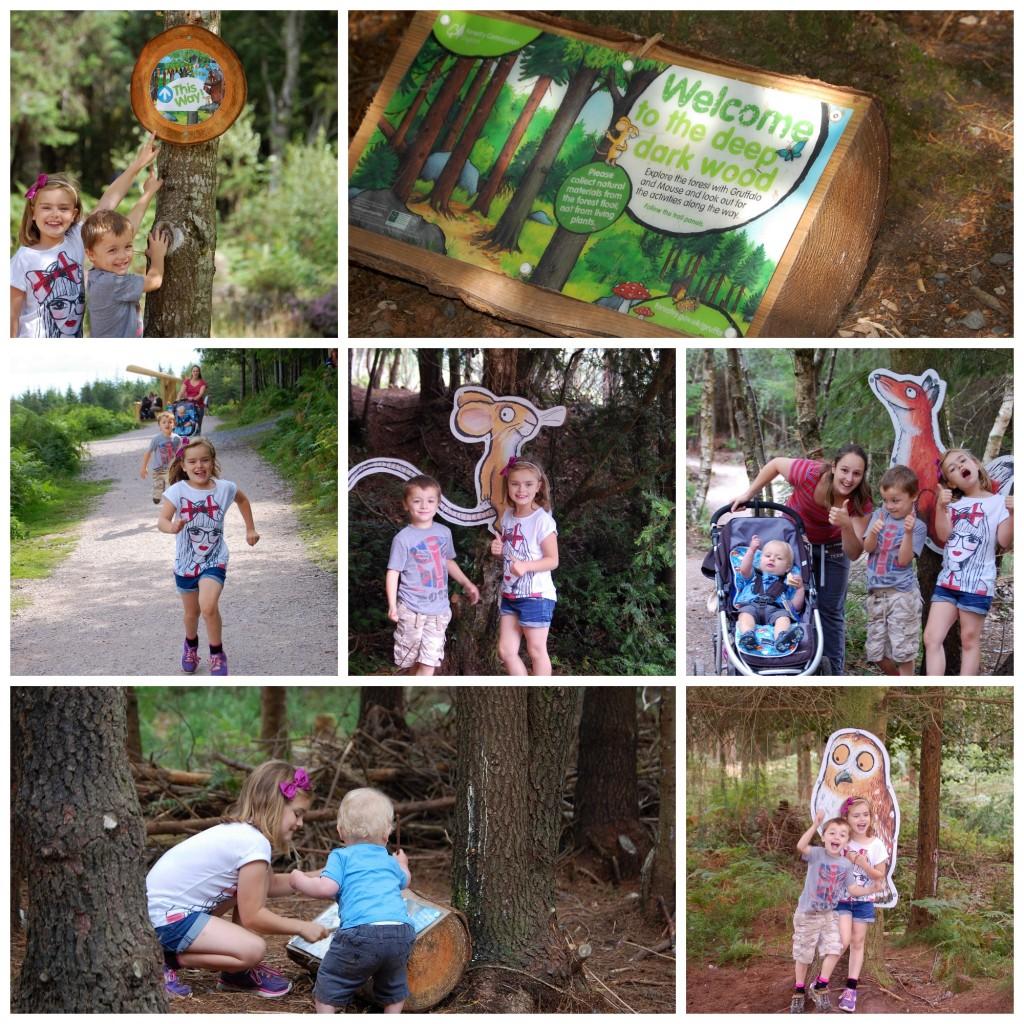 Gruyffalo trail, Haldon Forest