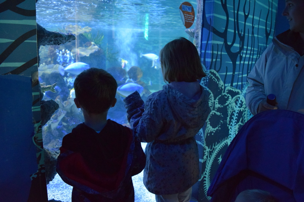 SeaLife Centre Weymouth review