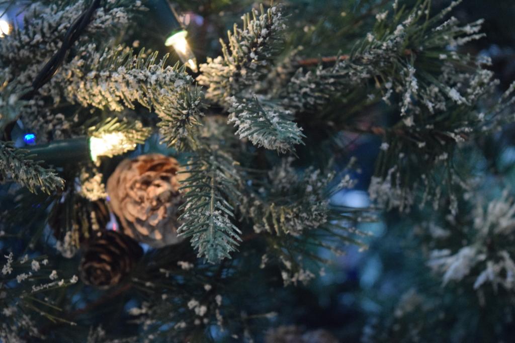 Silent Sunday, My Sunday Photo, Christmas