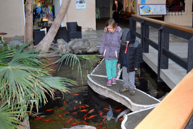 Center Parcs Longleat – our holiday review