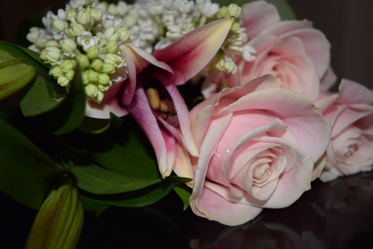 Review: Debenhams Mothers Day flowers