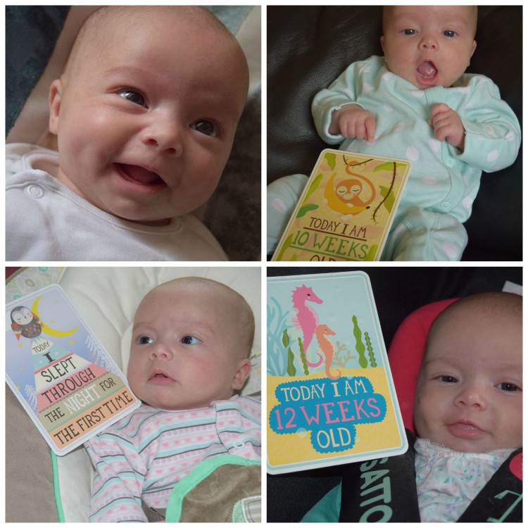 baby watch: 12 weeks old