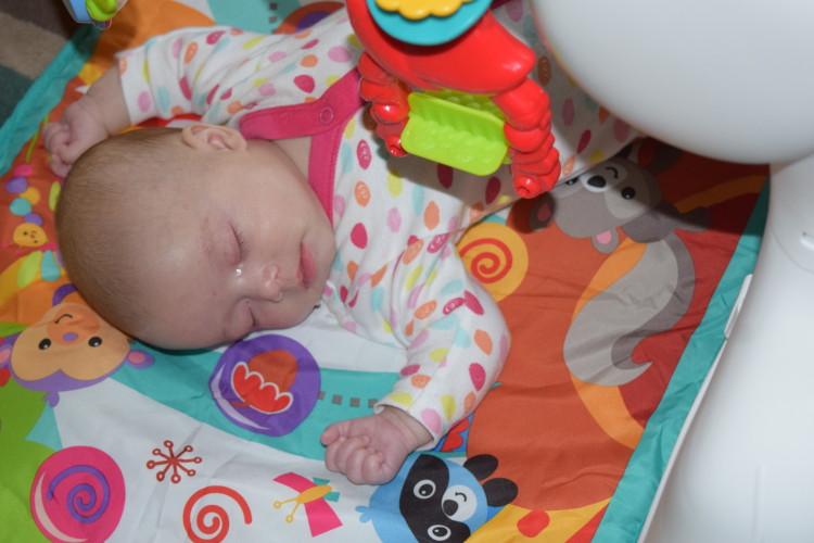 Fisher Price newborn to toddler gym