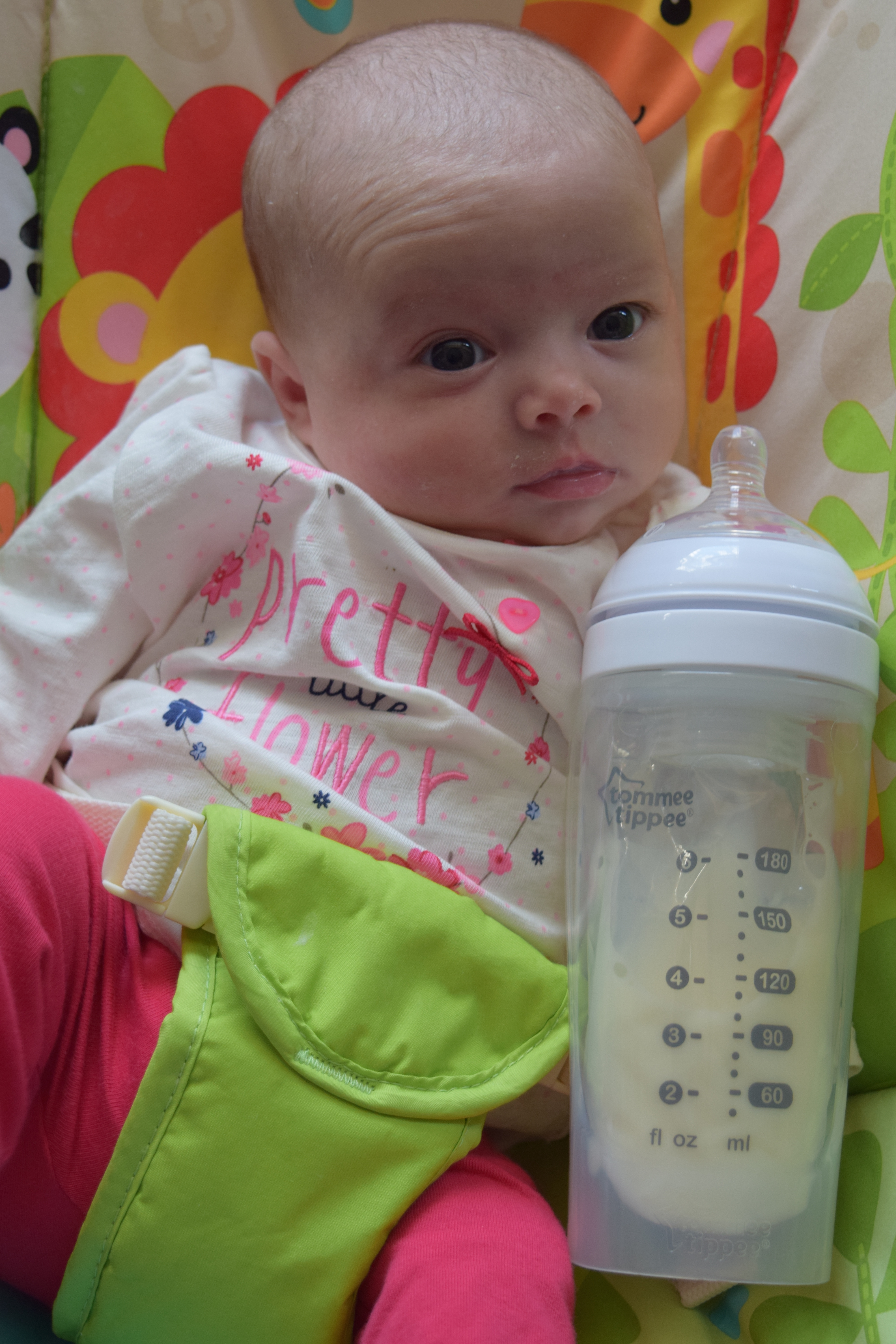 Review Tommee Tippee Express Amp Go Family Fever