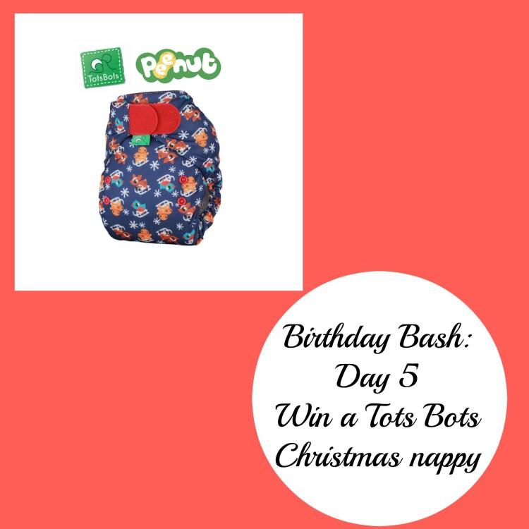 Birthday Bash: Day 5 – Win a Tots Bots PeeNut Christmas nappy