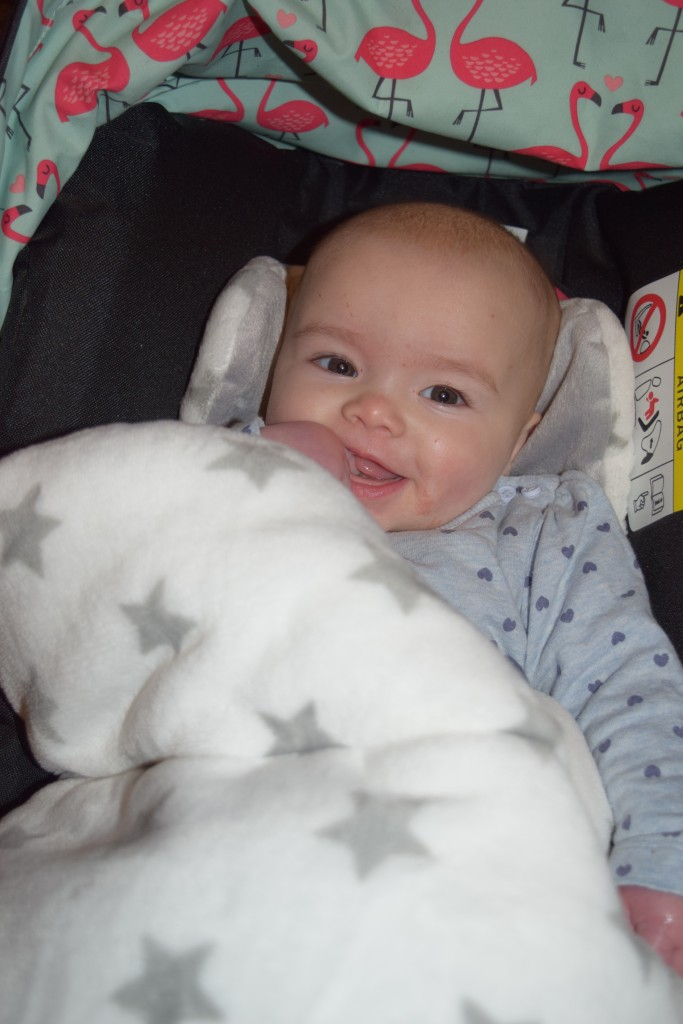 Babybundle Snuggletoes footmuff