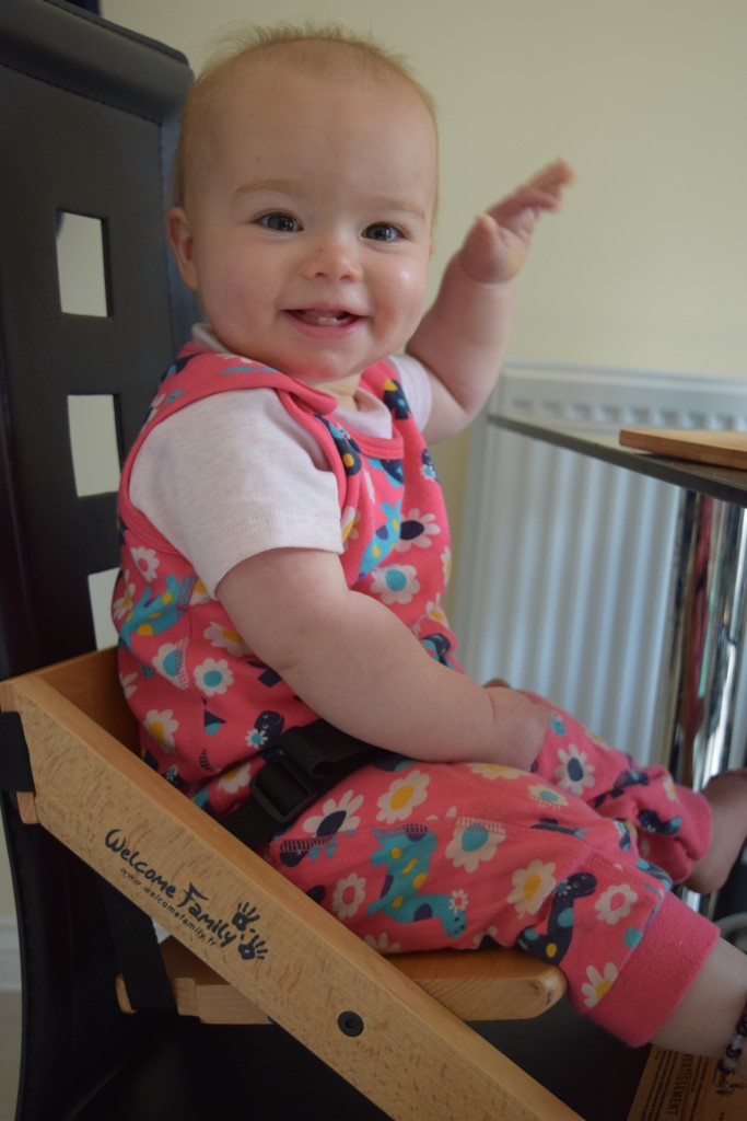 Review: Welcome Family booster seat