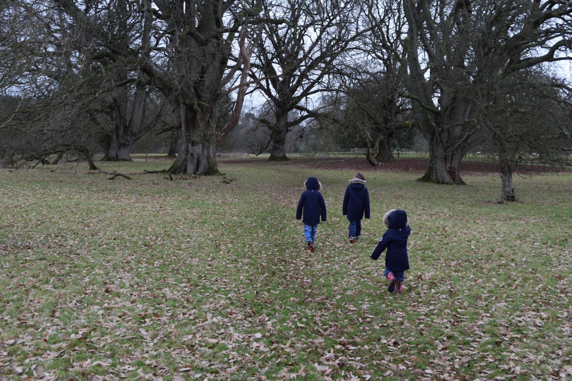 Millets coats