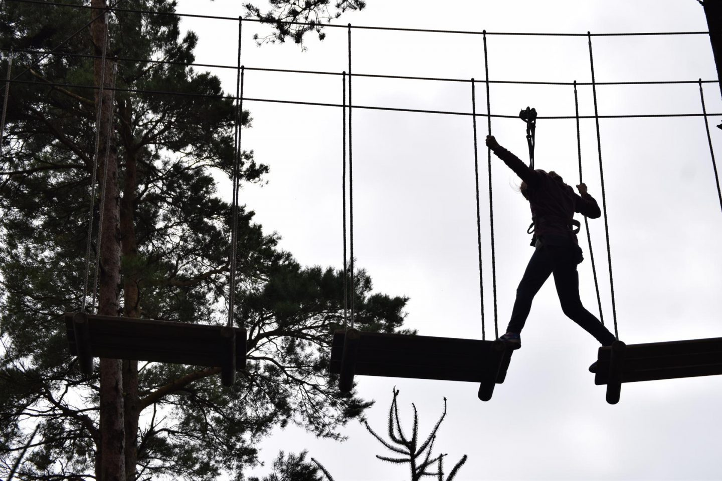 Review | Go Ape