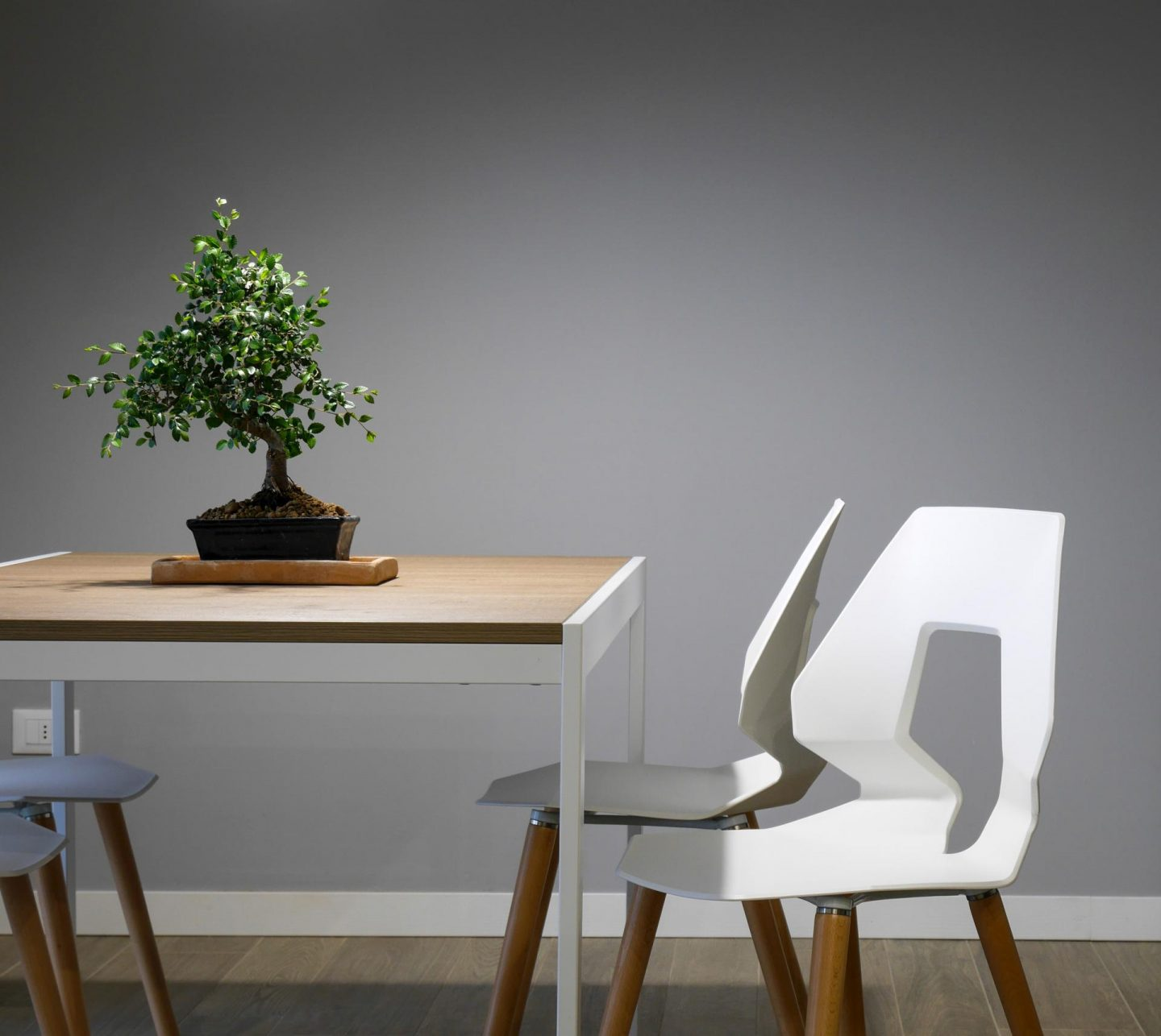 Why going green is good for your furniture
