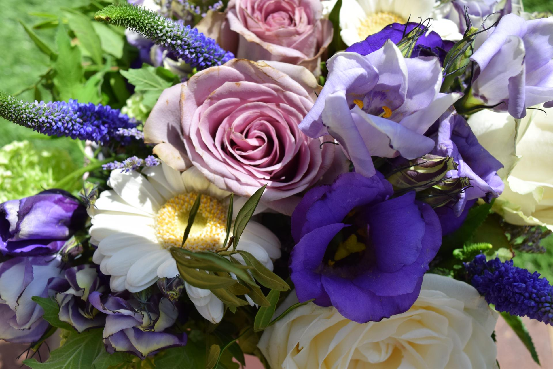 Bloom Magic flowers