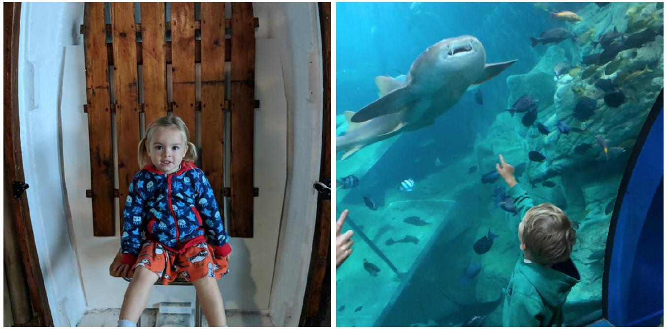 Review | National Marine Aquarium, Plymouth