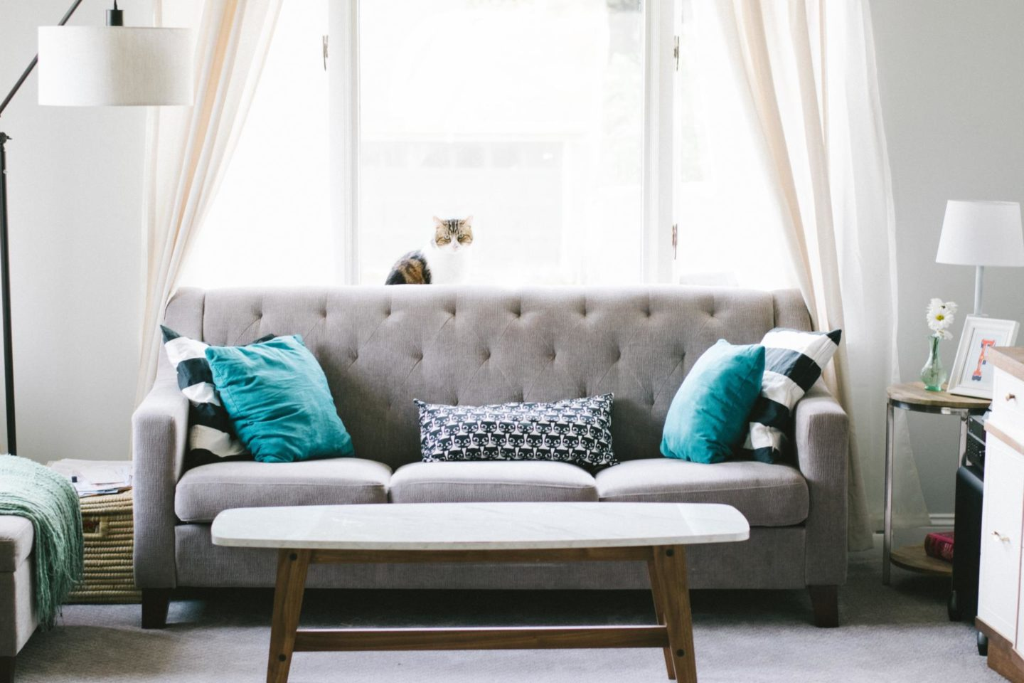 A guide to finding the perfect sofa
