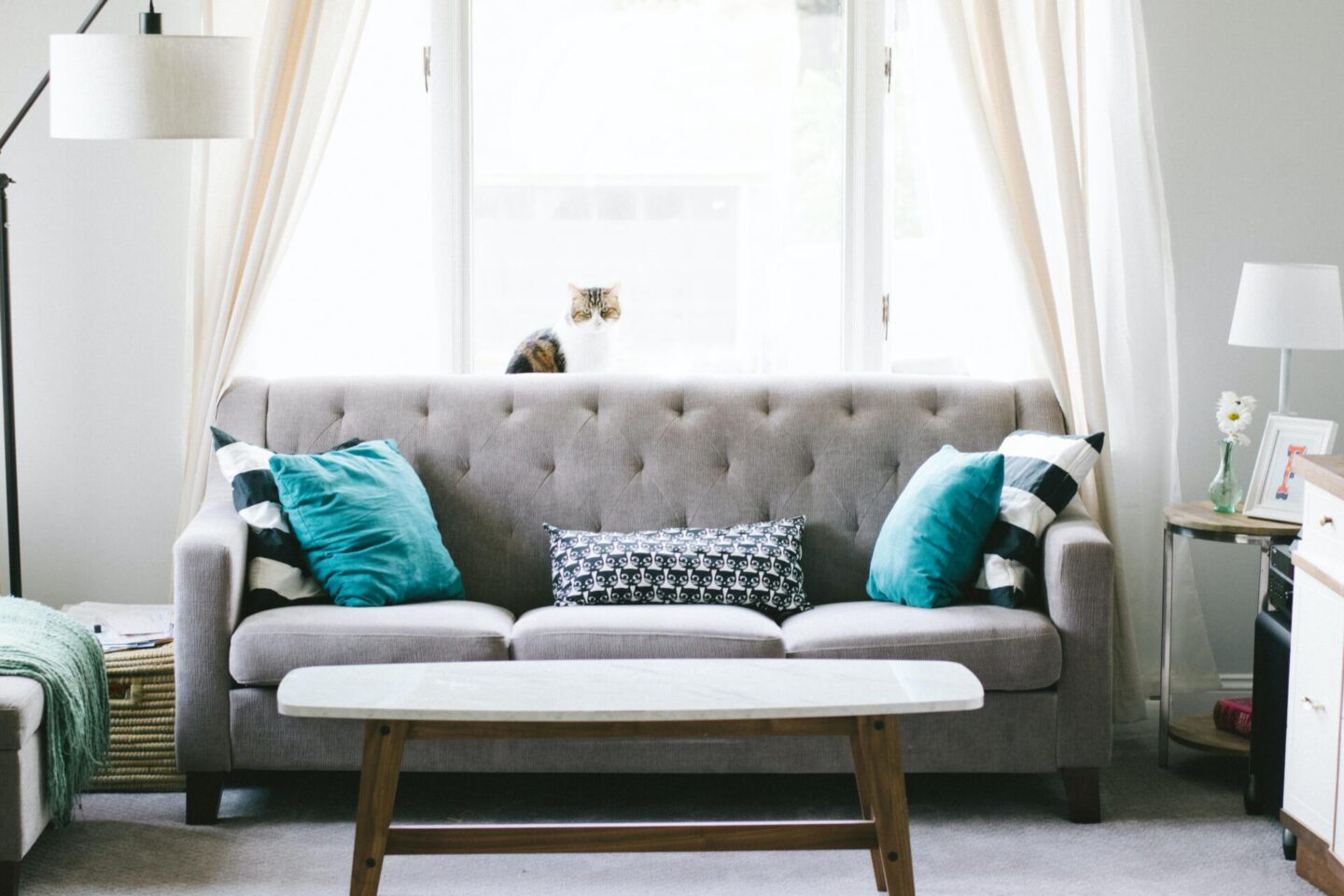 All you need to know about maintaining sofas and couches like a pro
